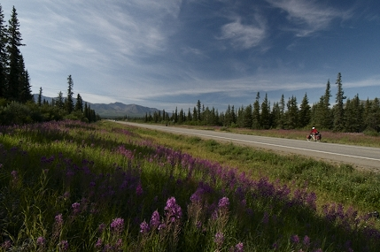 About to leave tarmac and turn onto the gravelly delights of the Denali Highway.