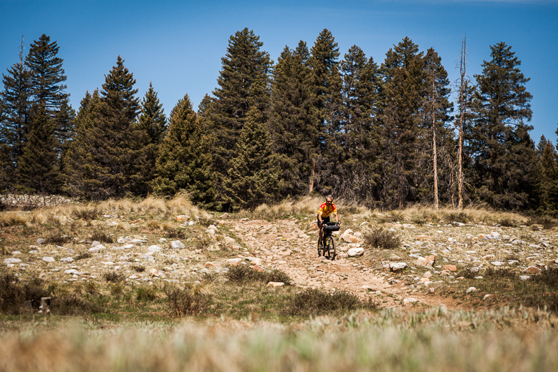 The terrain in the Carson National Forest covers the whole gamut - from rutted trails to off piste singletrack and graded roads.